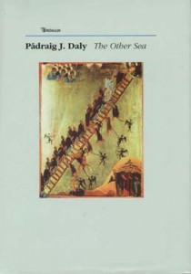 The Other Sea written by Padraig J Daly